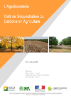 agroforesterie_carbone