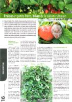 Bilan2018-Fraises-PetitsFruits