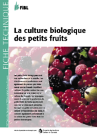 FIBL_0011-petitsfruits