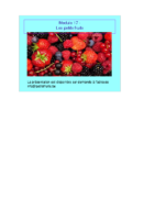 Module 25 – Les Petits Fruits