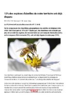 12% des espèces d'abeilles de notre territoire ont déjà disparu