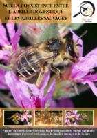 ABEILLES Coexistence entre l'abeille domestique et les abeilles sauvages