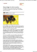 les haies dirigent les abeilles