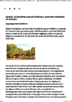 xylella-bacterie-tueuses-olivier