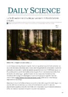 La forêt wallonne simulée par un demi milliard darbres virtuels