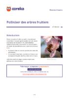 fiche-polliniser-des-arbres-fruitiers