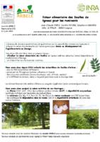Emile_Novak,_Mahieu_2018_Valeur_alimentaire_des_feuilles_de_ligneux_pour_les_ruminants_seminaire_ARBELE_juin_2018