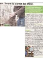 il-est-l-heure-de-planter-des-arbres_METRO-Nov-2019