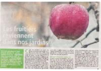 les-fruitiers-reviennent-dans-nos-jardins_METRO-nov-2019