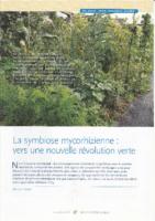Sol_mycorhizes_nouvelle-revolution-verte