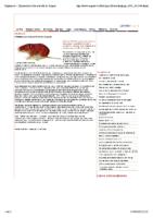 Hantavirus rôde en forêt de Soignes