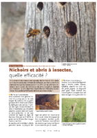 Nichoirs–insectes
