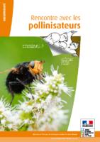 Rencontre avec les pollinisateurs